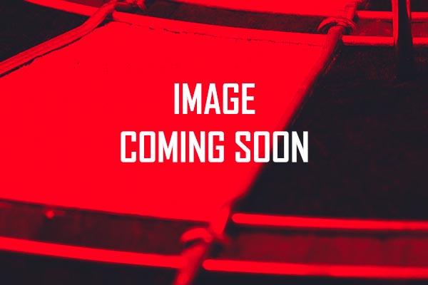 Hardcore Red with Transparent Black Dart Flights